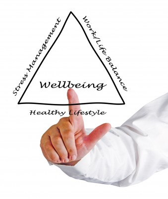 16420956-diagram-of-wellbeing